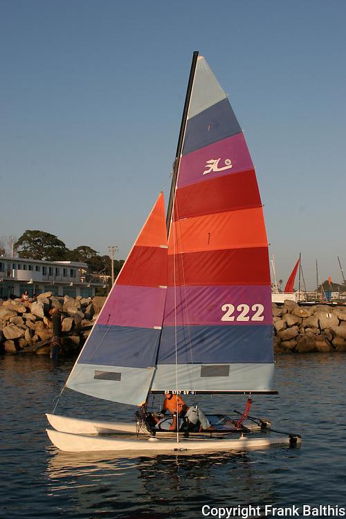 Hobie Cat sailing in Santa Cruz Harbor