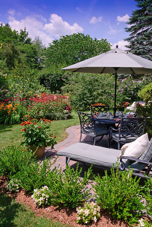 Gorgeous summer backyard landscaping and view of flower garden scene, with patio furniture, umbrella, table set for eating lunch outdoors, chairs, lounge chaise, sunny blue sky and white clouds, Rudbeckia in planter pot container, shrubs, trees, evergreens, boxwood Buxus, Monarda beebalm, perennials and annual plants, begonias, daylilies Hemerocallis, butterfly bush Buddleia. mulched bed, curves, lawn grass - a colorful outdoor living room space.