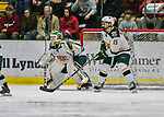 21 November 2017: University of Vermont Catamount goaltender Stefanos Lekkas in second period action against the University of Connecticut Huskies at Gutterson Fieldhouse in Burlington, Vermont. The Huskies defeated the Catamounts 4-1 in Hockey East play. Mandatory Credit: Ed Wolfstein Photo *** RAW (NEF) Image File Available ***