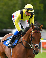 Mannaal ridden by Megan Nicholls goes down to the start  of The British EBF Premier Fillies' Handicap during Horse Racing at Salisbury Racecourse on 15th August 2019