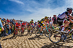 Peloton with Maarten WYNANTS from Belgium of Team LottoNL-Jumbo at the 4 star cobblestone sector 26 from Fontaine-au-Tertre to Quievy during the 2018 Paris-Roubaix race, France, 8 April 2018, Photo by Thomas van Bracht / PelotonPhotos.com | All photos usage must carry mandatory copyright credit (Peloton Photos | Thomas van Bracht)