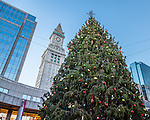 Christmas Tree under the Custom Tower, Boston, MA, USA