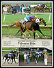 Toboggan Slide (#3) winning in a dead heat with  Golden Ghost (#11) in The First State Dash at Delaware Park on 8/22/09