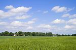 Europa, DEU, Deutschland, Nordrhein Westfalen, NRW, Rheinland, Niederrhein, Krefeld, Typische Agrarlandschaft, Feld, Acker, Anbau, Getreide, Gerste, Himmel, Wolken, Cumuluswolken, Kategorien und Themen, Landwirtschaft, Landwirtschaftlich, Agrar, Agrarwirtschaft, Natur, Naturfoto, Naturfotos, Naturfotografie, Naturphoto, Naturphotographie, Landschaft, Landschaften, Landschaftsfoto, Landschaftsfotografie, Landschaftsphoto, Landschaftsphotographie......[Fuer die Nutzung gelten die jeweils gueltigen Allgemeinen Liefer-und Geschaeftsbedingungen. Nutzung nur gegen Verwendungsmeldung und Nachweis. Download der AGB unter http://www.image-box.com oder werden auf Anfrage zugesendet. Freigabe ist vorher erforderlich. Jede Nutzung des Fotos ist honorarpflichtig gemaess derzeit gueltiger MFM Liste - Kontakt, Uwe Schmid-Fotografie, Duisburg, Tel. (+49).2065.677997, ..archiv@image-box.com, www.image-box.com]