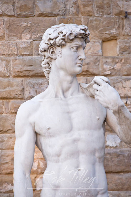 Europe, Italy, Tuscany, Florence, Copy of Michelangelo's Statue of David at Palazzo Vecchio