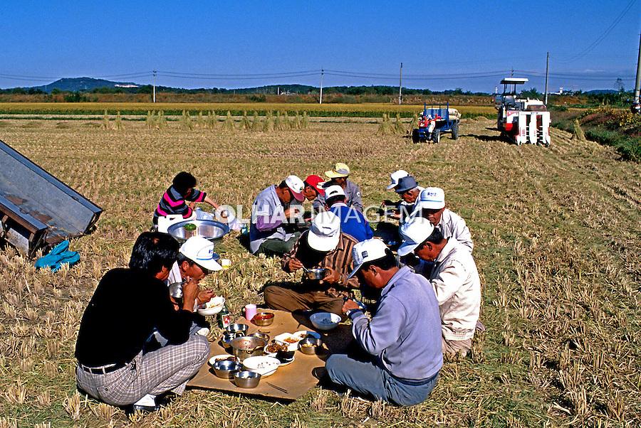 Hora do almoço em plantação de arroz. Coréia do Sul. 1999. Foto de Ricardo Azoury.