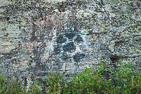 Pictographs on precambrian rock on Lake of the Woods<br />