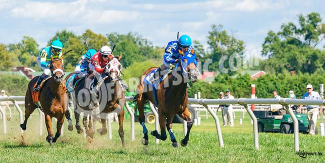 Inspired Blue winning at Delaware Park on 9/7/16