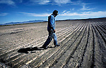 Callao,Utah--9/7/2005--.Cecil Garland, 80, walks through one of his fields on his ranch in Callao. Callao is located in the west desert of the county, near the Nevada border, and according to Garland is &quot;90 miles from any road that will take you anywhere.&quot; .<br />