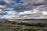 USA, Wyoming, Encampment, open landscape covered in sagebrush and juniper brush, Big Creek Ranch