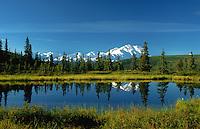 Nugget Pond