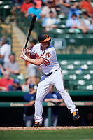Baltimore Orioles designated hitter Trey Mancini (16) at bat during a Grapefruit League Spring Training game against the Tampa Bay Rays on March 1, 2019 at Ed Smith Stadium in Sarasota, Florida.  Rays defeated the Orioles 10-5.  (Mike Janes/Four Seam Images)