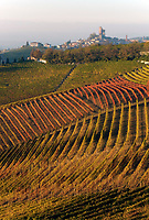 Italien, Piemont, Region Langhe, Weinberge, malerische Herbstlandschaft, Weindorf Serralunga d'Alba im Hintergrund | Italy, Piedmont, Region Langhe, picturesque autumn landscape, vineyards, wine village Serralunga d'Alba at background