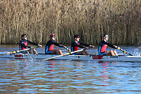 Crew: 86   Op 4- BAND-1   Star Club   STA-Smithy<br /> <br /> Wallingford Head 2017<br /> <br /> To purchase this photo, or to see pricing information for Prints and Downloads, click the blue 'Add to Cart' button at the top-right of the page.
