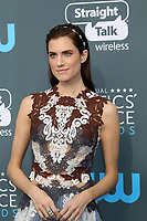 LOS ANGELES - JAN 11:  Allison Williams at the 23rd Annual Critics' Choice Awards at Barker Hanger on January 11, 2018 in Santa Monica, CA