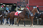 March 14, 2020: Excession (2) with jockey Tyler Baze aboard before the Rebel Stakes at Oaklawn Racing Casino Resort in Hot Springs, Arkansas on March 14, 2020. Justin Manning/Eclipse Sportswire/CSM