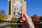 November 5, 2019; Graduate students in Ron Hellenthal's Aquatic Insects class take samples of insects from the library reflecting pool on the day it is drained for the year. (Photo by Matt Cashore/University of Notre Dame)