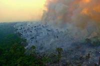 Queimadas no Xingu
