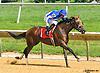 Patriotic Endeavour winning at Delaware Park on 8/10/16