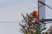 a basketball, frozen in midair, as it is about to pass through the hoop and chain-link net at an urban park on a spring afternoon.