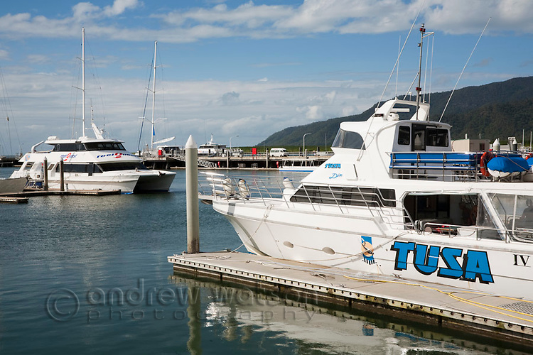 Dive boats moored at Marlin Marina.  Cairns, Queensland, Australia