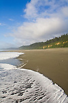 California, Wilderness coast, Pacific Ocean, Prairie Creek Redwoods State Park, Humboldt County, California, USA, sea foam, beach,