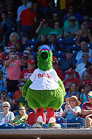 The Phillie Phanatic during a Grapefruit League Spring Training game between the Baltimore Orioles and the Philadelphia Phillies on February 28, 2019 at Spectrum Field in Clearwater, Florida.  Orioles tied the Phillies 5-5.  (Mike Janes/Four Seam Images)