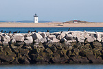 Cormorants roost on Provincetown jetty, with Long point lighthouse in background.