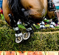LEXINGTON, KENTUCKY - APRIL 29: Detail images of a horse jumping a brush fence during the Cross Country Test at the Rolex Kentucky 3-Day Event at the Kentucky Horse Park on April 29, 2017 in Lexington, Kentucky. (Photo by Scott Serio/Eclipse Sportswire/Getty Images)