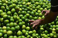 Reportaje en el mercado de productores agrícola en la ciudad ganadera, por el alza en algunos productos de la canasta básica..Foto:Cesar de la Cruz.Fecha:.