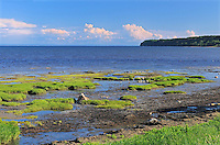 Shoreline along the Gulf of St. Lawrence<br /> Longue-Rive<br /> Quebec<br /> Canada