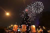 SAO PAULO SP, 08.11.2013 - INAUGURAÇÃO DA ARVORE DE NATAL IBIRAPUERA - Inauguracao da arvore de Natal do Parque do Ibirapuera com 58 metros de altura, na noite deste domingo. 08. (Foto: Vanessa Carvalho / BRazil Photo PRess).