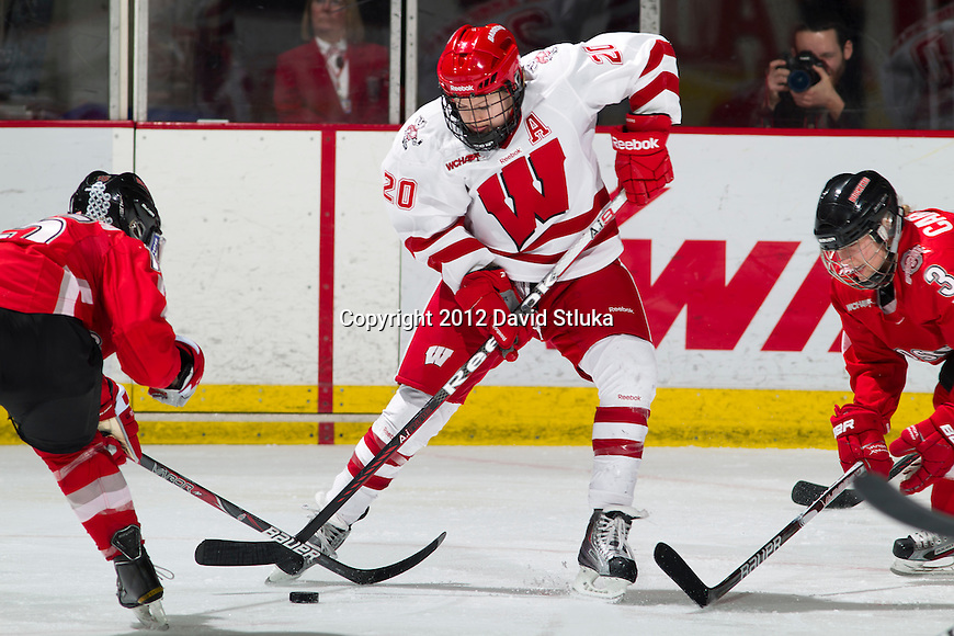 Wisconsin Badgers Brooke Ammerman (20) handles the puck during a WCHA Conference NCAA college women's hockey game against the Ohio State Buckeyes on Saturday, February 18, 2012 in Madison, Wisconsin. Ohio State won 4-2. (Photo by David Stluka)