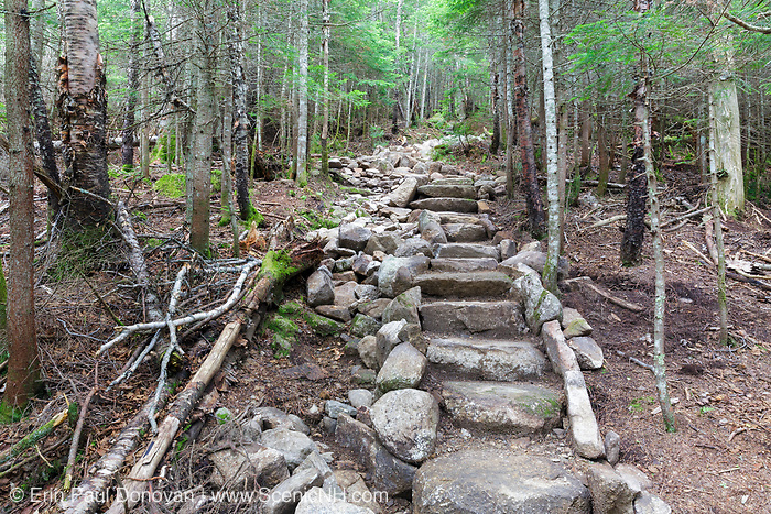 July 2016 - A newly built stone staircase along the Mt Tecumseh Trail in Waterville Valley, New Hampshire. Trail stewardship groups promote that minimal stonework should be done along hiking trails; and that any trail work done along a trail should look natural and blend in with the surroundings.
