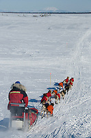 Veteran Iditarod musher Paul Gebhardt's dog team near Shaktoolik along Bering Sea, Alaska