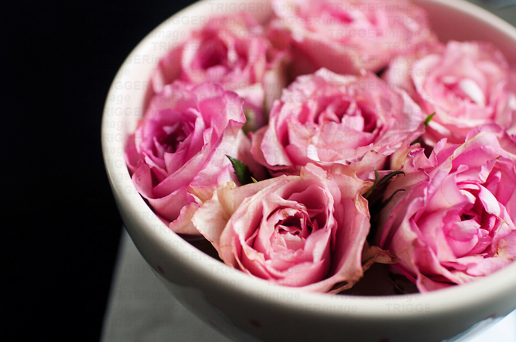 A bowl with seven pink rose heads floating in water displayed on a table 3/4 view