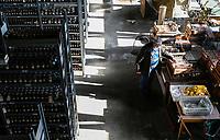 GERMANY, Halle, Martin-Luther University, rye experimental farming since 1878, soil sample and analysis of different years / Landwirtschaftliche Fakultaet, Lehr- u. Versuchsstation, Ewiger Roggenanbau seit 1878, gegruendet von Julius Kuehn, Bodenproben aus verschiedenen Jahren