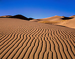 John offers private photo tours to Great Sand Dunes National Park and Rocky Mountain National Park, Colorado.