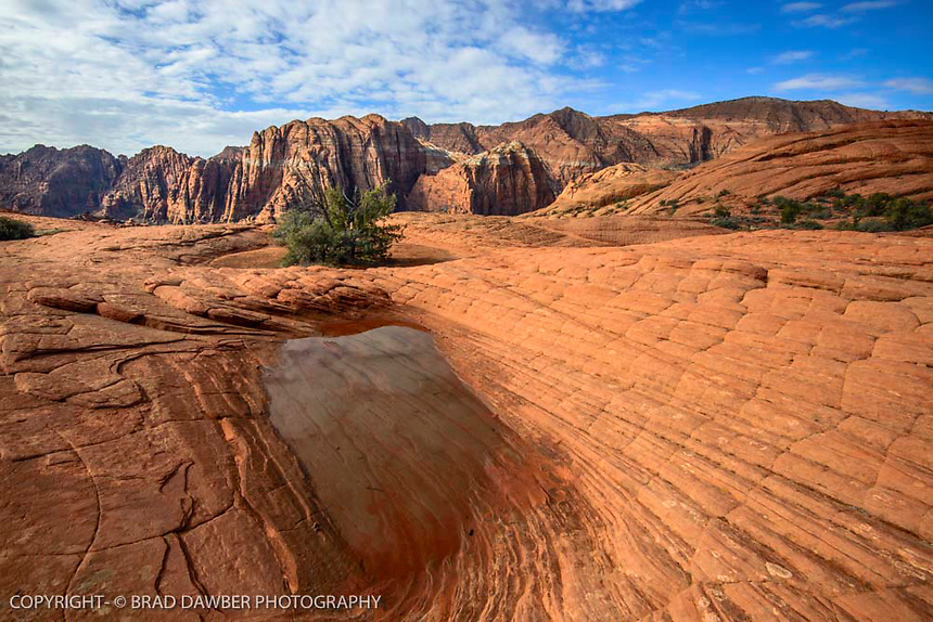 Ponds in the Petrifried dunes after a storm SNOW CANYON STATE PARK- IVINS- ST. GEORGE, UTAH