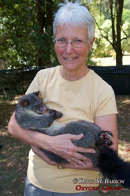 Amy Kvalseth Holding Mountain Brushtail Possum