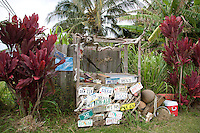 License plates cover a fruit stand between red ti plants along Hana Highway, Maui.