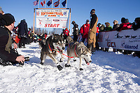 Sunday, March 4, 2012  Hank Debruin leaves the Restart of Iditarod 2012 in Willow, Alaska.