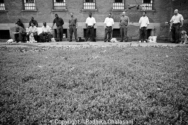 BEACON, NEW YORK:  Prisoners listens to instructor Carl Rothe during class for the Puppies Behind Bars program at Fishkill Correctional Facility. The training program consists of one day of class a week on topics such as obedience training, grooming, basic care of the dogs. The rest of the week prisoners keep the dogs with them as they go about their daily routine in the prison and work on training individually.
