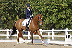 15/10/2017 - Class 5 - Novice 27 - Unaffiliated dressage championships - Brook Farm Training Centre