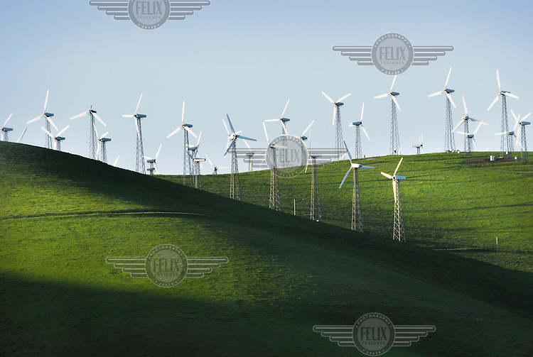 The Altamont Pass wind farm in Central California. With 4,900 turbines, this is the largest concentration of wind turbines in the world, with a capacity of 576 megawatts (MW), producing about 125 MW on average and 1.1 terawatt-hours (TWh) annually.