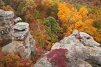 Shawnee National Forest, IL<br /> Dramatic sandstone formations above the autumn forest canopy - on the Observation Trail, Garden of the Gods Recreation Area
