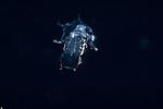 Mantis larva caped crusader, Black Water Diving; Florida Atlantic Diving; Plankton; larval fish; pelagic larval marine life; plankton creatures, jellyfish; SE Florida, Atlantic Ocean; Gulf Stream current