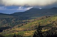 Europe/France/Auvergne/63/Puy-de-Dôme/Parc Régional des Volcans: La chaine des Dores vue depuis les environs du col de la Croix Morand