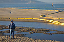 A man looks out at the beach at Crissy Field wreathed in oil spill containment booms. On November 7, 2007 the Cosco Busan container ship spilled an estimated 58,000 gallons of bunker fuel into San Francisco Bay after striking a tower of the San Francisco-Oakland Bay Bridge.