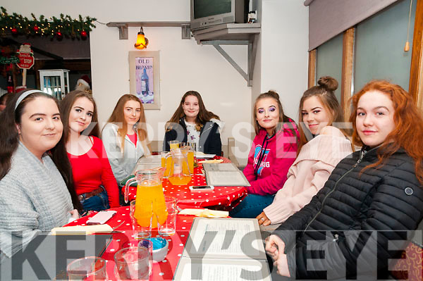 16th Birthdays: Twins Katelyn & Denise Cusack, Listowel celebrating their 16th birthdays at Casa Mia Restaurant, Listowel on Saturday night last. L-R : Laura Buckley, Orla Mahony, Nicole Collins Katelyn & Denise Cusack, Veronica Kazimierska & Molly McElligott.